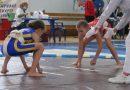 Майже три десятки золотих медалей привезли з чемпіонату України вінницькі сумоїсти